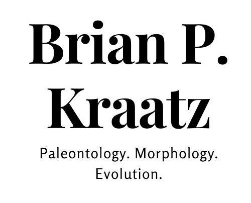 Brian Kraatz